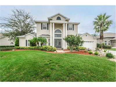 New Port Richey Single Family Home For Sale: 2529 Shipston Avenue