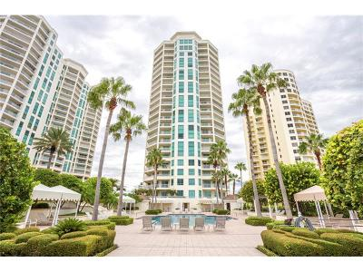 Pinellas County Rental For Rent: 1180 Gulf Boulevard #904
