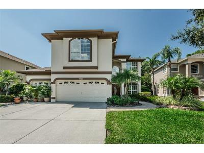Palm Harbor Single Family Home For Sale: 4160 Grandchamp Circle