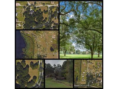 Thonotosassa Residential Lots & Land For Sale: 0 Broadland Pass Lot 102