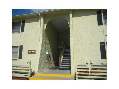 Hillsborough County Condo For Sale: 7507 Dolonita Drive #7507