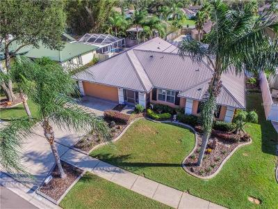 Tampa Single Family Home For Sale: 15107 Willowdale Road