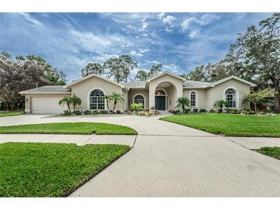 Tarpon Springs Single Family Home For Sale: 1713 Gulf Beach Boulevard