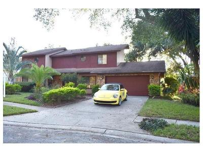 Palm Harbor Single Family Home For Sale: 2789 Valencia Lane W