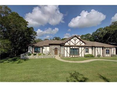 Clearwater Single Family Home For Sale: 1902 Belleair Road