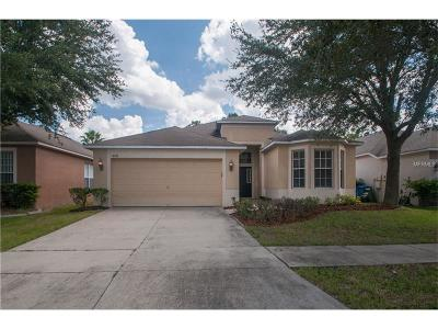 Riverview Single Family Home For Sale: 8311 Moccasin Trail Drive