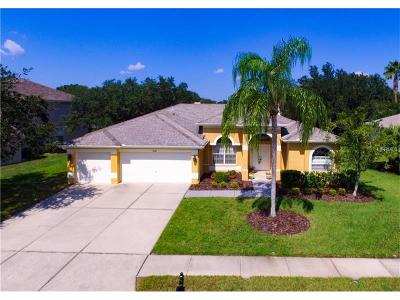 Palm Harbor Single Family Home For Sale: 4241 Rotherham Court