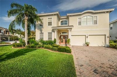 Safety Harbor Single Family Home For Sale: 2335 Messenger Circle