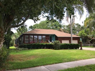 oldsmar Single Family Home For Sale: 703 Shore Drive E