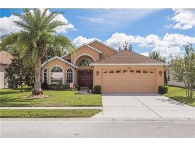 Hernando County Single Family Home For Sale: 1194 Mystic Court