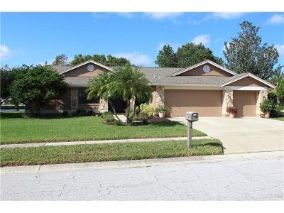 Tarpon Springs Single Family Home For Sale: 706 Centerwood Drive