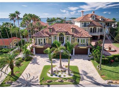 Palm Harbor Single Family Home For Sale: 199 Shore Drive