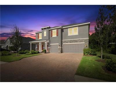 Ellenton Single Family Home For Sale: 6316 49th Court E
