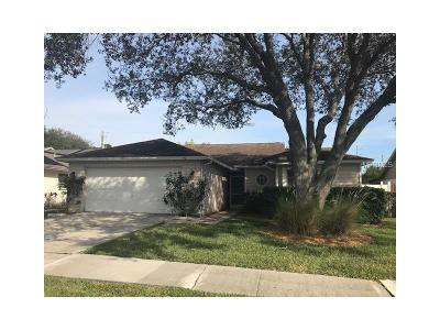 Tampa Single Family Home For Sale: 8732 Hampden Drive