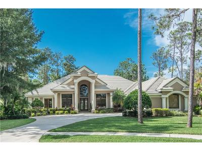 Oldsmar Single Family Home For Sale: 1348 Preservation Way