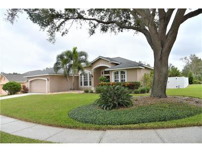 Palm Harbor Single Family Home For Sale: 949 Belted Kingfisher Drive S