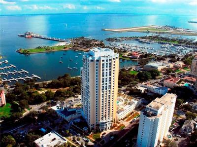400 Beach Drive Condo, Bayfront Tower Condo, Bliss, Cloister Of Beach Drive Condo, Florencia Condo, One St. Petersburg, Ovation Condo, Parkshore Plaza Condo, Salvador, Signature Place Condo, The Bezu, The Salvador, Vinoy Place Condo Condo For Sale: 400 Beach Drive NE #201