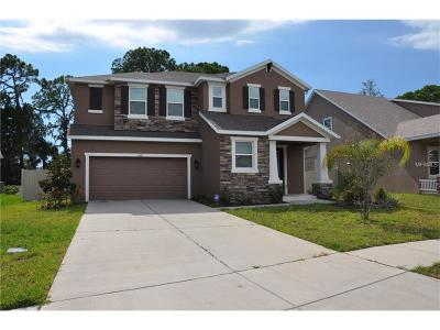 Tarpon Spring, Tarpon Springs Single Family Home For Sale: 1247 Windy Bay Shoal
