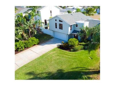 Tierra Verde Single Family Home For Sale: 413 Monte Cristo Boulevard