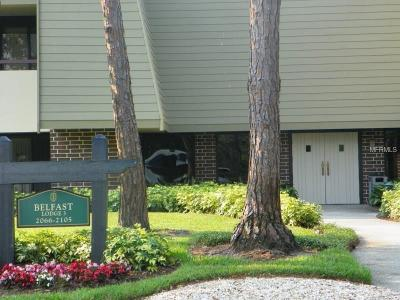 Palm Harbor Condo For Sale: 36750 Us Highway 19 N #2-212