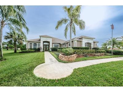 Tarpon Springs Single Family Home For Sale: 1383 N Jasmine Avenue