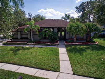 Palm Harbor Single Family Home For Sale: 4172 Boyd Lane