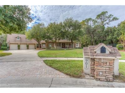 Hillsborough County Single Family Home For Sale: 901 Academy Drive