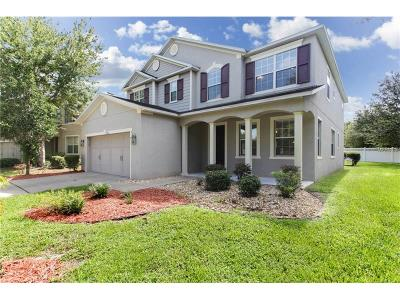 Wesley Chapel Single Family Home For Sale: 7252 Seedpod Loop