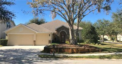 Odessa Single Family Home For Sale: 15220 Octavia Lane