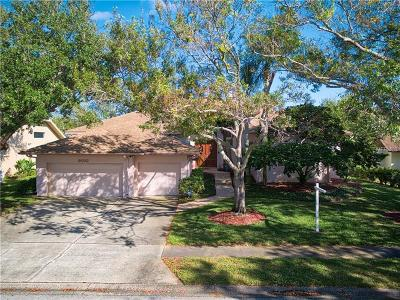Largo Single Family Home For Sale: 9010 Baywood Park Drive