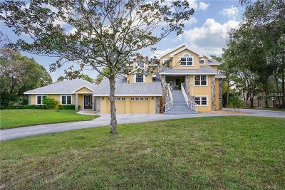 Single Family Home For Sale: 2595 Bryan Lane