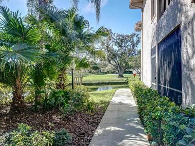 Palm Harbor Condo For Sale: 3366 Mermoor Drive #1104
