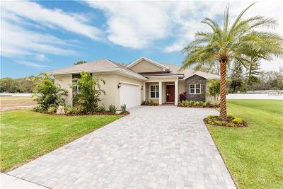 Clearwater Single Family Home For Sale: 2988 Breezy Meadows