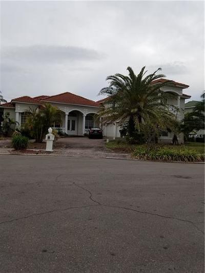 Dade City, Apollo Beach, St Petersburg, Wesley Chapel, San Antonio, Clearwater, Lithia, Seffner, Land O Lakes, Ruskin, Temple Terrace Rental For Rent: 5909 Zaki Lane