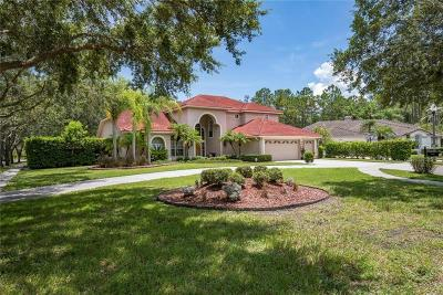 Oldsmar Single Family Home For Sale: 1637 Chatam Court