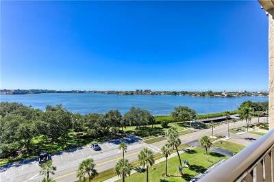 Hernando County, Hillsborough County, Pasco County, Pinellas County Condo For Sale: 7037 Sunset Drive S #705
