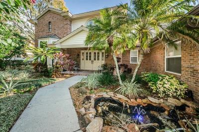 Palm Harbor Single Family Home For Sale: 2429 Waterview Court