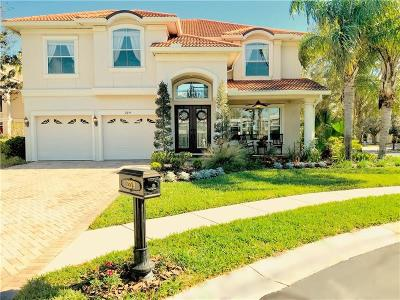 Clearwater Single Family Home For Sale: 2279 Sweet Grass Court