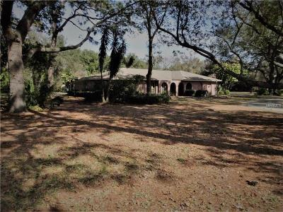 Clearwater, Clearwater`, Cleasrwater Single Family Home For Sale: 2242 Alligator Creek Road
