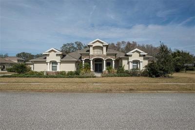 Tarpon Springs Single Family Home For Sale: 2635 Keystone Springs