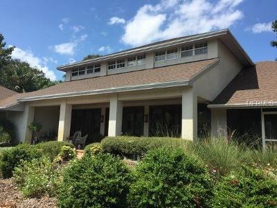 Mount Dora Single Family Home For Sale: 1383 Elysium Boulevard