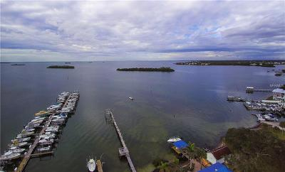 Palm Harbor Multi Family Home For Sale: 270 North Street