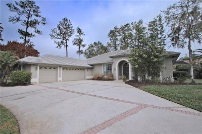 Oldsmar Single Family Home For Sale: 1367 Briargrove Way
