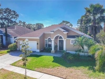 Tarpon Springs Single Family Home For Sale: 408 Liam Avenue