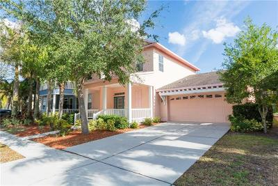 Apollo Beach Single Family Home For Sale: 418 Manns Harbor Drive