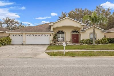 Palm Harbor Single Family Home For Sale: 4534 Serenity Trail