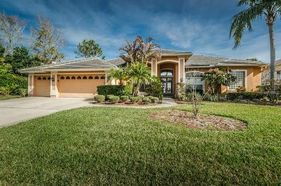 Palm Harbor Single Family Home For Sale: 3833 Executive Drive
