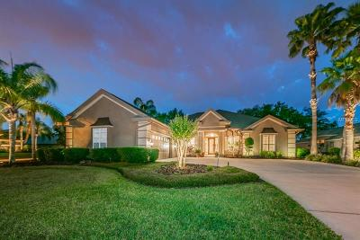 Palm Harbor Single Family Home For Sale: 3970 Mullenhurst Drive