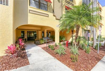 Hernando County, Hillsborough County, Pasco County, Pinellas County Condo For Sale: 5849 Park Street N #311