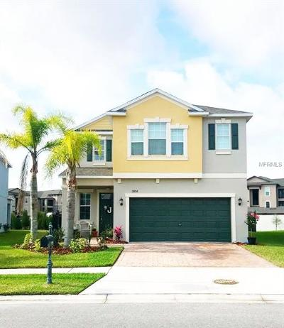 New Port Richey Single Family Home For Sale: 11806 Lake Boulevard